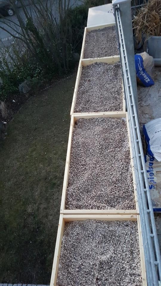 Die Sand- und Kiesbeete auf der Südseite der Dachterasse.