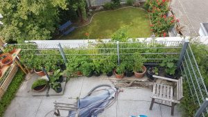 Puffer- und Ertragszone im Dachgarten.