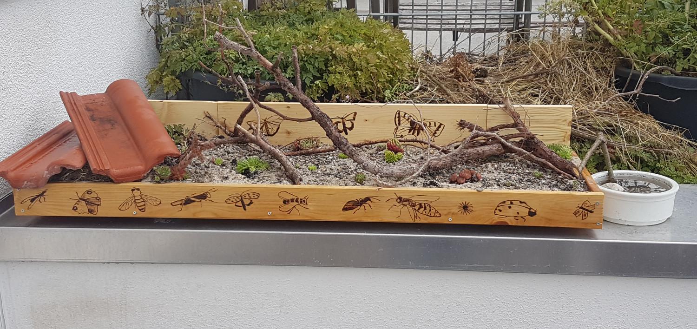 Fertiges Steingartenbeet mit Insektentränke nebenan.